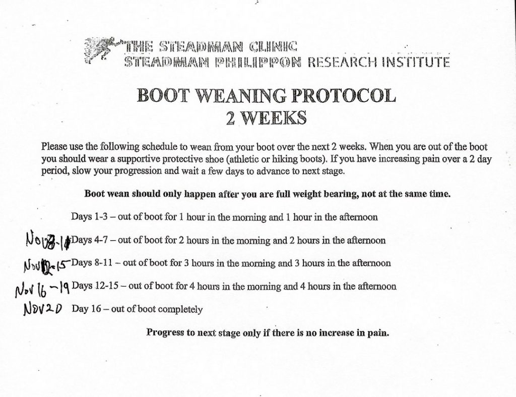 Text of the two week boot weaning protocol.